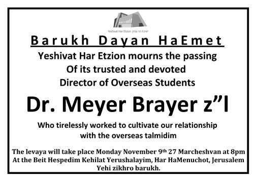 Dr. Meyer Brayer zl english web