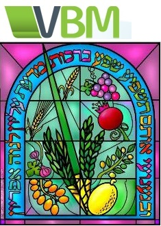 sukkot journal